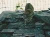 bobcat-stalking